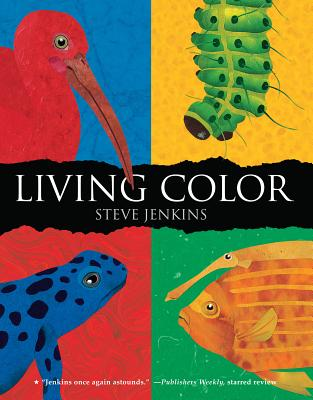 Living Color By Jenkins, Steve